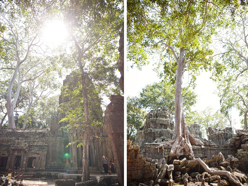 cambodia by kim le photography