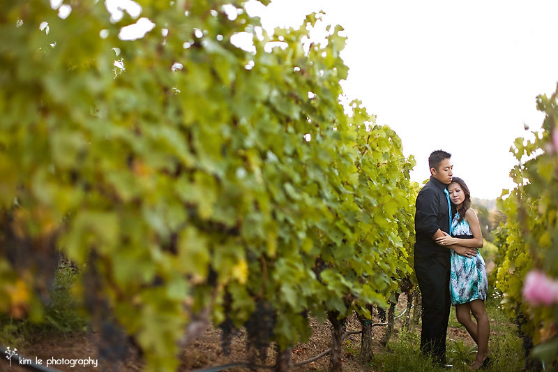 corinne + bing: napa valley engagement