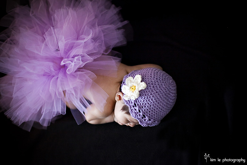 baby photography by kim le photography